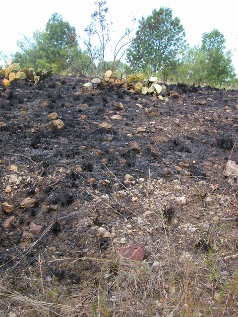THNA Fire Damage (7/17/09)